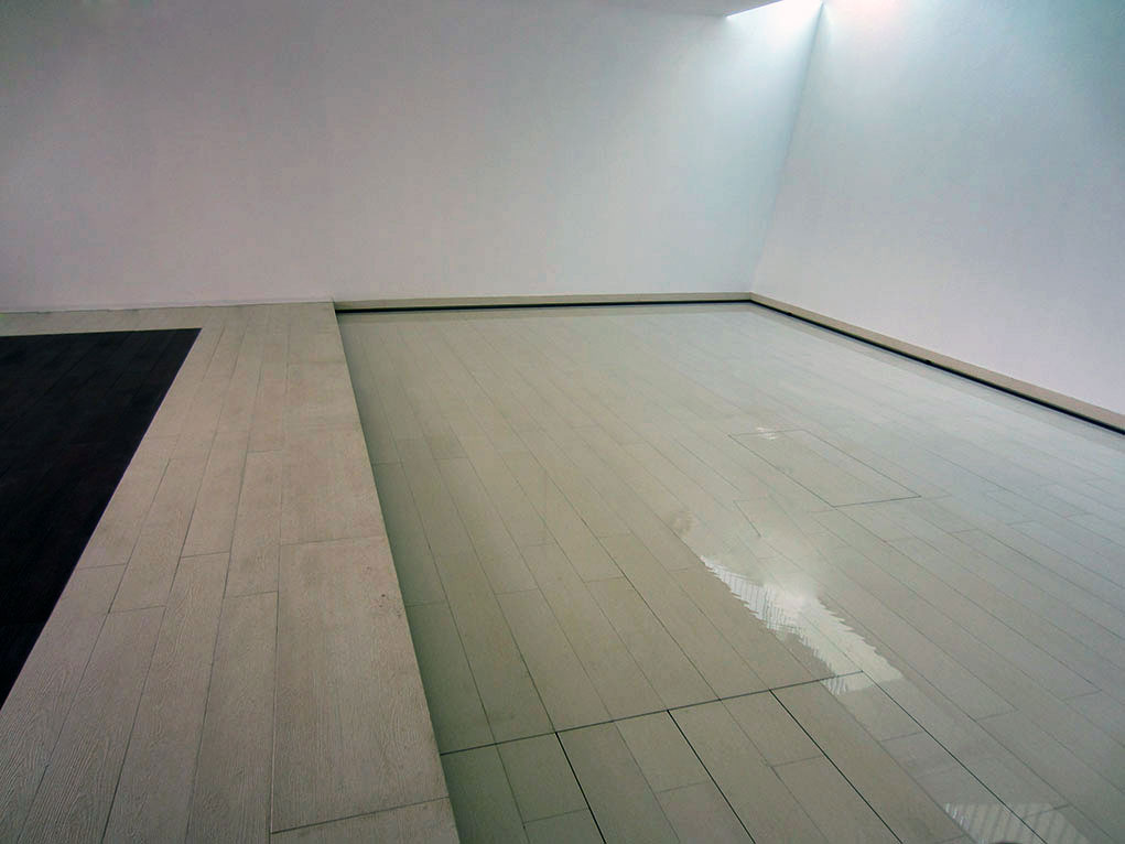 Fond mobile pour piscine hidden pool fond mobile for Piscine miroir a fond mobile
